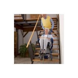 Sube escaleras 'Escalino'