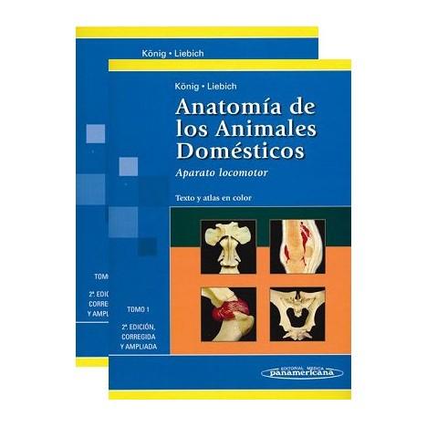 Anatomía de los Animales Domésticos. Tomo I