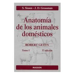 Anatomía de los animales domésticos