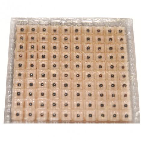 Semillas Herbales con Adhesivo Cuadrado para Auriculo (1000 unidades)