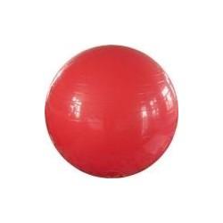 Balón de Ejercicio 55cm