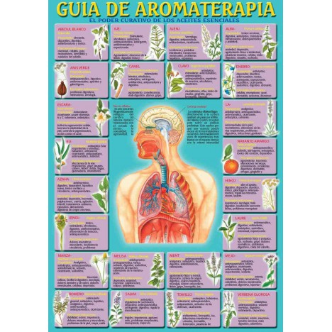 Guia de Aromaterapia