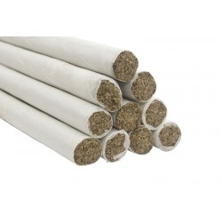 Moxa en puro de artemisa pura con humo
