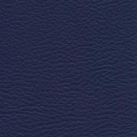 Azul Marino